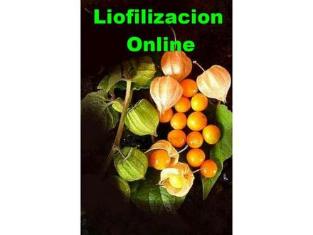 Clic en la imagen para ver su versión completa.  Nombre: consultoria+en+liofilizacion+cartagena+bolivar+colombia__4076FF_1.jpg Visitas: 1090 Tamaño: 17.2 KB ID: 2484