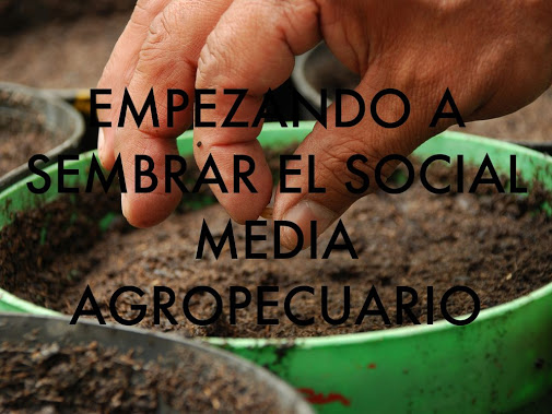 marketing agropecuario, social media, bialar,