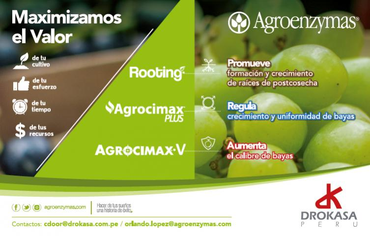 Nombre:  agroenzymas-drokasa-peru.jpg Visitas: 51 Tamaño: 49.6 KB