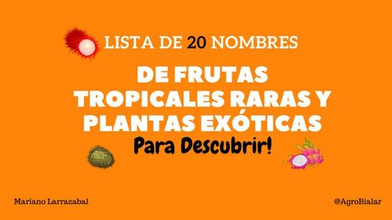 Clic en la imagen para ver su versión completa.  Nombre: Frutas Tropicales Raras y Plantas Exóticas.jpg Visitas: 945 Tamaño: 37.7 KB ID: 16542