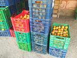 blogs/meylin-jara-silva/attachments/19554-vendo-frutas-mayor-deshidratados-y-mermeladas-granadilla.jpg