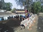 blogs/miguel-angel-munoz-lebon/attachments/7531-venta-de-abono-organico-y-lombriz-roja-californiana-1.jpg