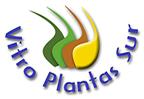 VITRO PLANTAS SUR LTDA